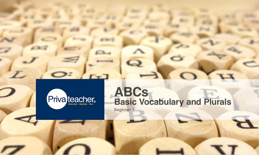 Beginner 1: ABCs – Basic Vocabulary and Plurals