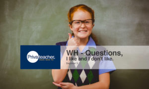 Beginner 9: WH – Questions, I like and I don't like.